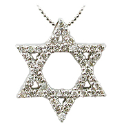 18K White Gold 0.24cttw Diamond Star of David Pendant
